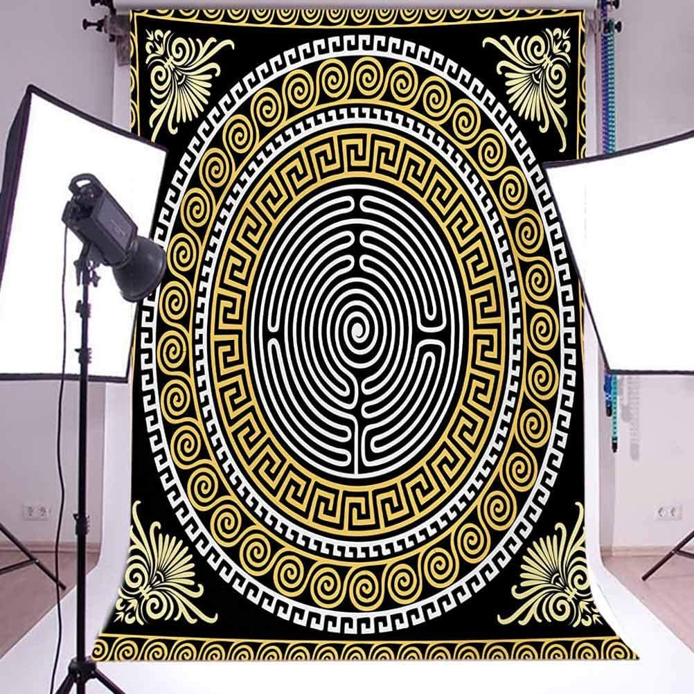 Greek Key 6.5x10 FT Photography Backdrop Classical Pattern with Intricate Design Spiral Waves Frame and Maze Background for Photography Kids Adult Photo Booth Video Shoot Vinyl Studio Props