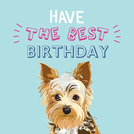 Yorkshire Terrier Waggy Tails Charity Birthday Card Amazon