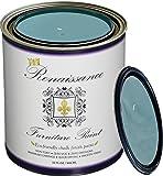 Renaissance Chalk Furniture & Cabinet Paint Qt - Non Toxic, Eco-Friendly, Superior Coverage - Robin's Egg (32oz)