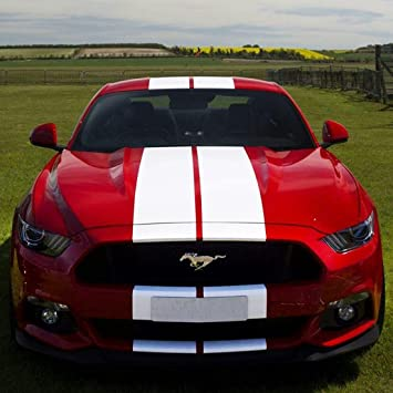Mustang racing strip cost