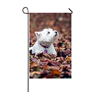 Mweet Yorkie Dog Welcome Home Garden Flag for Yard to Light up Your Home Double Sided