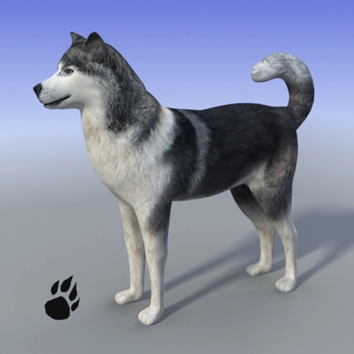 Snow Dog Survival Simulator (Best Dog Games For Android)