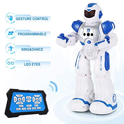 SGILE Robot Toy, RC Gesture Sensing Programmable Intelligent Robot with Infrared Controller for Kids: Toys & Games