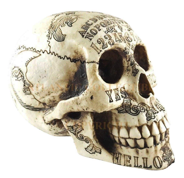 Day of The Dead Ouija Skull Figurine Skeleton 8.5'' Long Occult Spirit Witchcraft For Premium Home Garden Decor