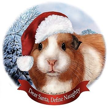 Amazon.com: Holiday Pet Gifts American Guinea Pig Santa Hat ...