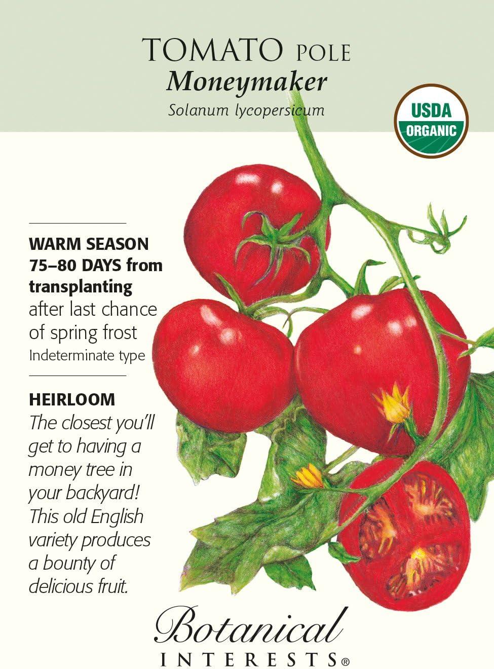 Organique Tomate MONEYMAKER 100 FINEST SEEDS