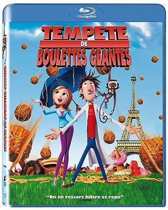 TEMPETE DE BOULETTES GEANTES 2 DVDRIP