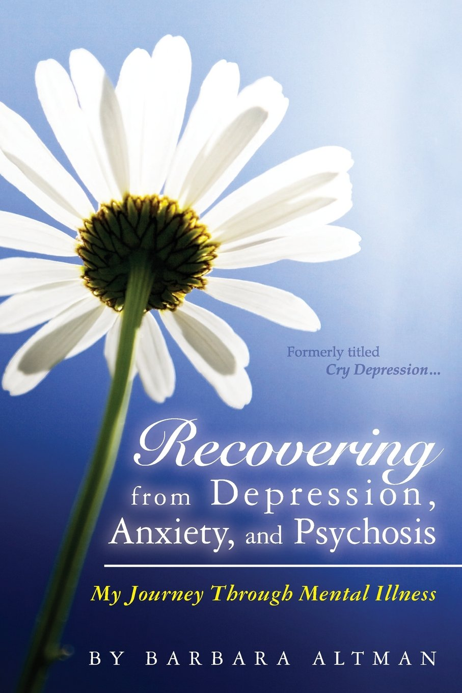 Recovering Depression Anxiety Psychosis Journey product image