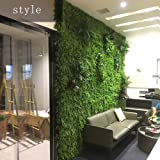 BJL-Wall Decoration Background Wall - Artificial Plant Wall, Wedding Flower Wall, Three-Dimensional Screen Roof Wall Decoration (4 Styles to Choose from) OYO (Color : 04)