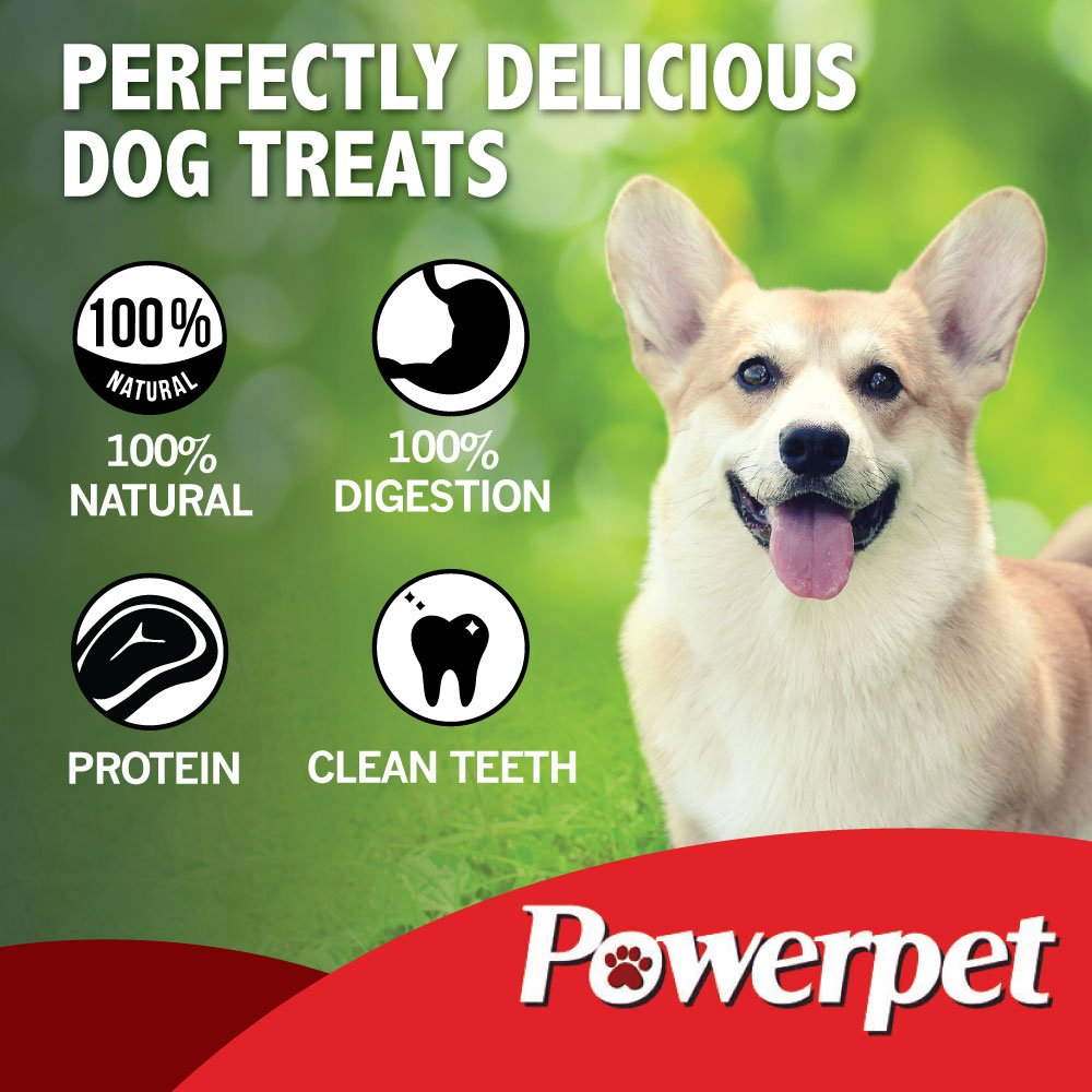 Powerpet: Beef Taffy Bites - Natural Dog Chew - 8 OZ Pack - Helps Improve Dental Hygiene - 100% Natural & Highly Digestible - Protein with Low Fat - Beef Jerky Dog Treat - Made from Beef Esophagus by Powerpet (Image #4)