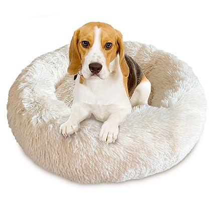 Amazon.com: Cama para mascotas Docatgo, cama para perro ...