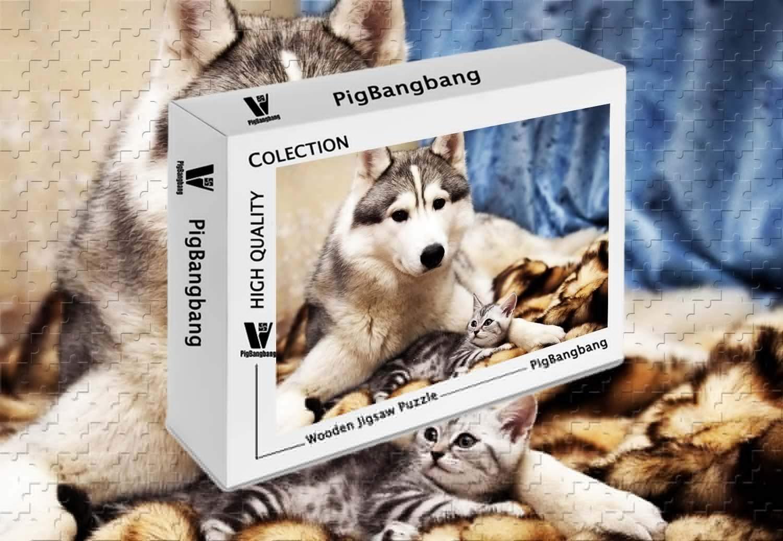 お買い得モデル PigBangbang バスウッド A ハスキー 犬 A バスウッド Gray (34.4 Cat are Friends 1500ピース ジグソーパズル (34.4 X 22.6インチ) B07HY6ZZNH, リビング館:a673b05a --- sinefi.org.br