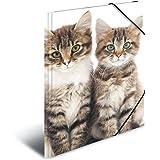 Herma 7138 Farde à rabats A4 en plastique, série animaux – motif chats, avec élastiques, 1pièce