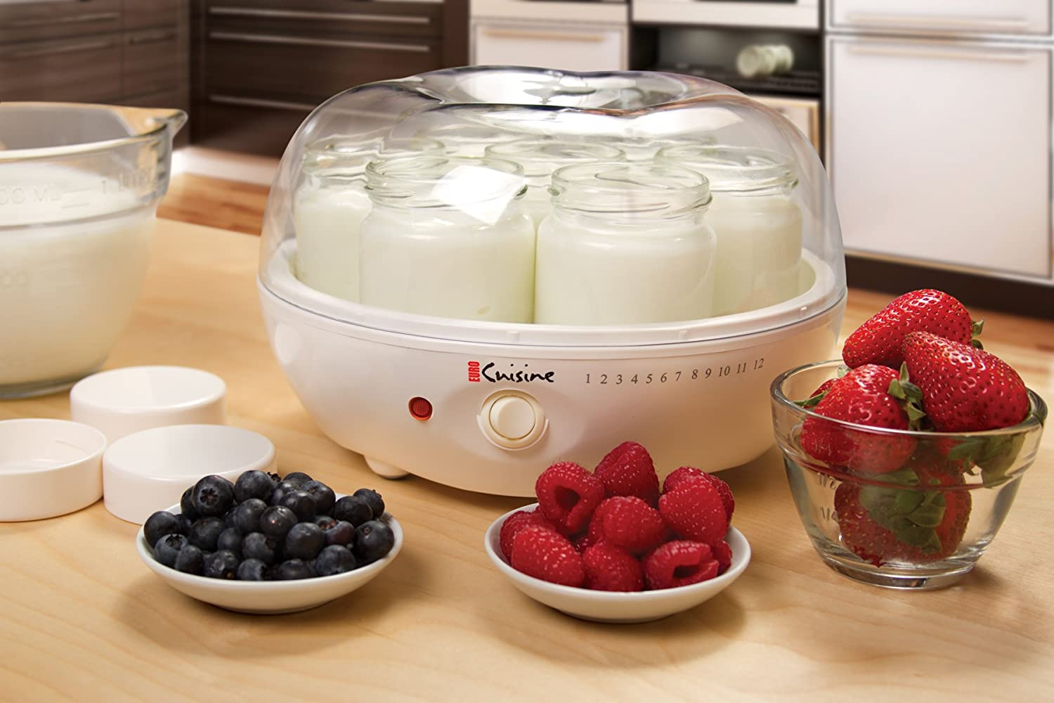 Euro Cuisine Yogurt make : how does a yogurt maker work?