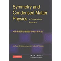 对称和凝聚态物理中的计算方法