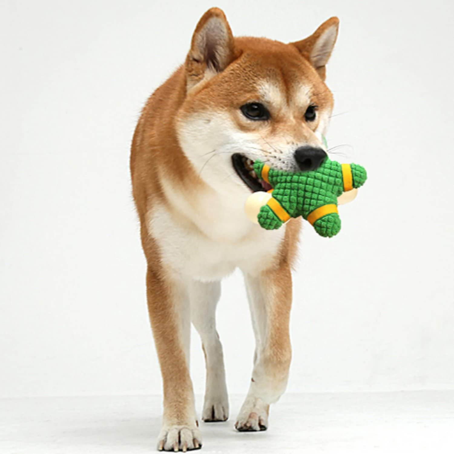 EEToys Squeaky Toy Soft Latex Dog Toy Floating Ball for Interactive Fetch /& Play Green Ring Large