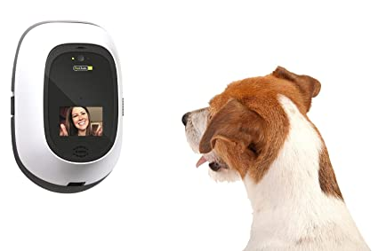 PetChatz Greet & Treat Videophone Dog Camera and pet monitors
