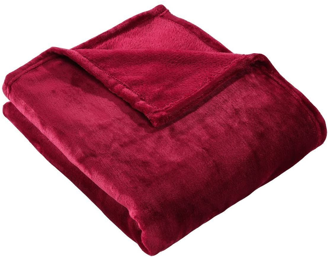 HYSEAS Velvet Throw, Light Weight Plush Luxurious Super Soft and Cozy Fuzzy Anti-Static Throw Blanket for Couch Chair All Seasons, 50x60 Inches, Ruby