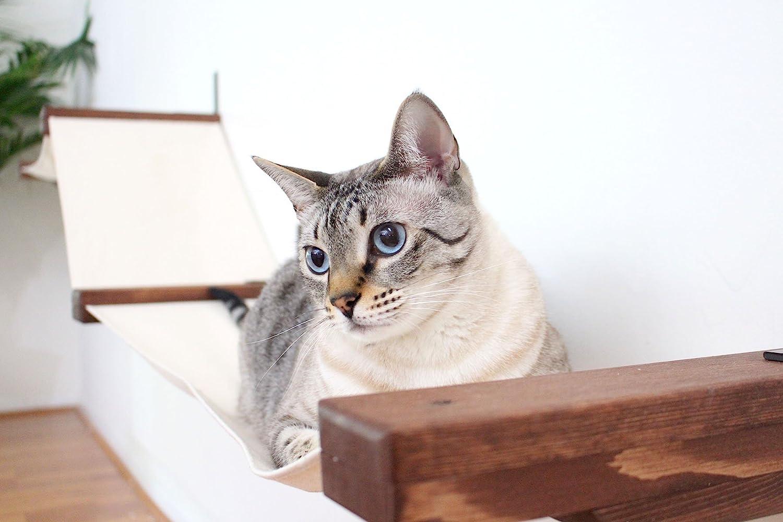 Estante de pared para gatos de CatastrophiCreations en forma de hamaca, hecha a mano (tamaño grande): Amazon.es: Productos para mascotas
