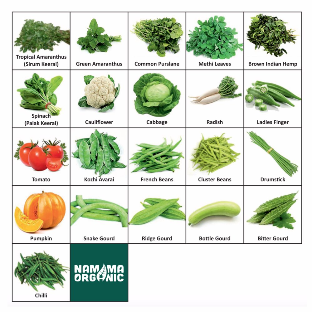 Namma Organic S 21 Varieties Of Organic Vegetable Seeds For Terrace