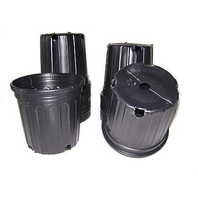 9GreenBox - 20 New Plastic Nursery 1 Gallon Trade Pot ~ Holds 0.66 Gal : Planters : Garden & Outdoor