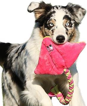 Robustes Hundespielzeug aus Plüsch Quietschend