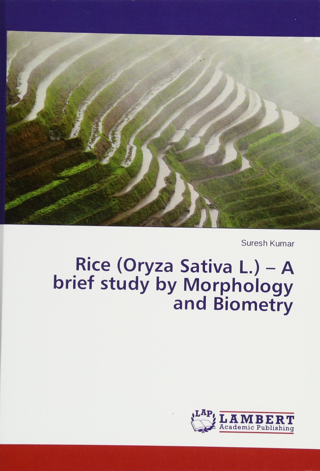 Rice (Oryza Sativa L ) - A brief study by Morphology and Biometry