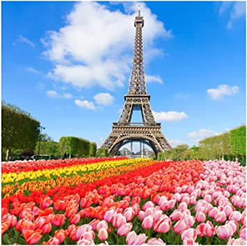 Paris 6x8 FT Backdrop Photographers,Eiffel Tower with Tulip and City Silhouette Nostalgic Town Floral Romantic Background for Baby Shower Birthday Wedding Bridal Shower Party Decoration Photo Studio
