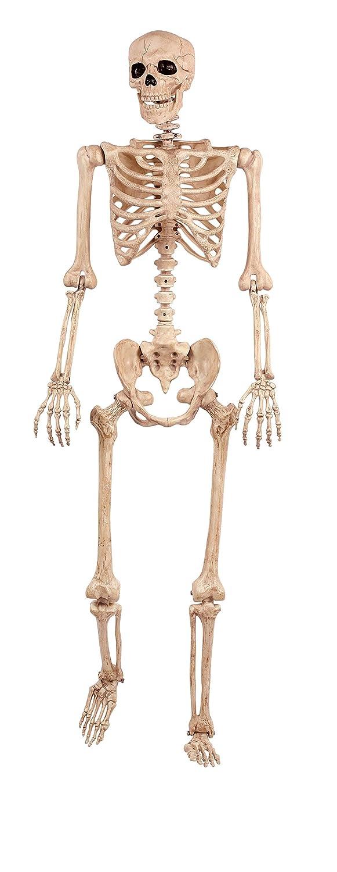Amazon.com: Crazy Bonez Pose-N-Stay Skeleton: Toys & Games
