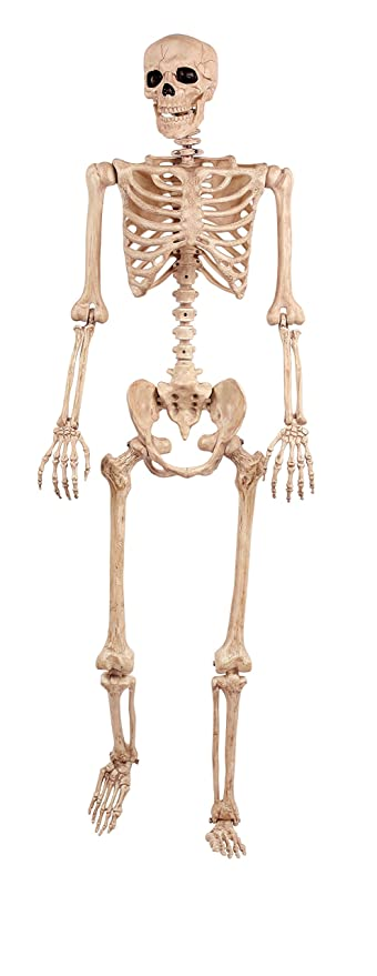 Amazon.com: Crazy Bonez Pose-N-Stay Skeleton: Toys & Games
