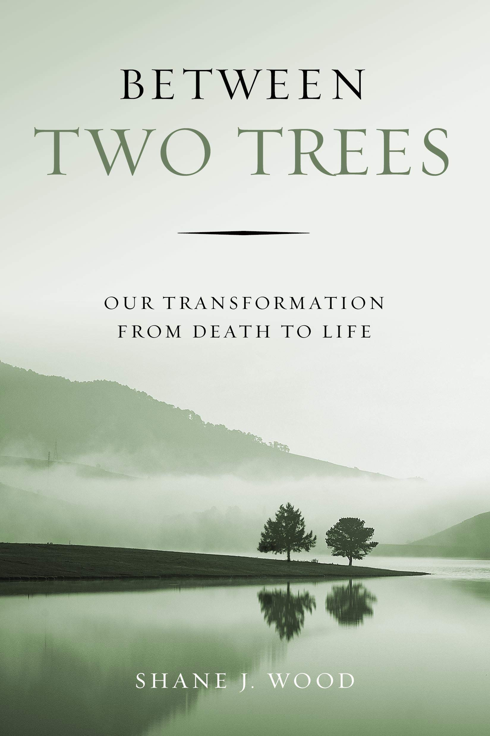 Between Two Trees: Our Transformation from Death to Life: Shane J