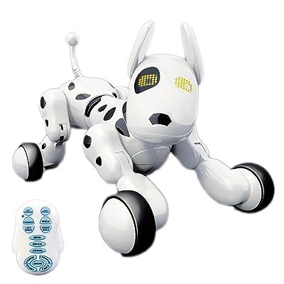 Hi-Tech Wireless Remote Control Robot Interactive Puppy Dog For Kids, Children,Girls, Boys (White)