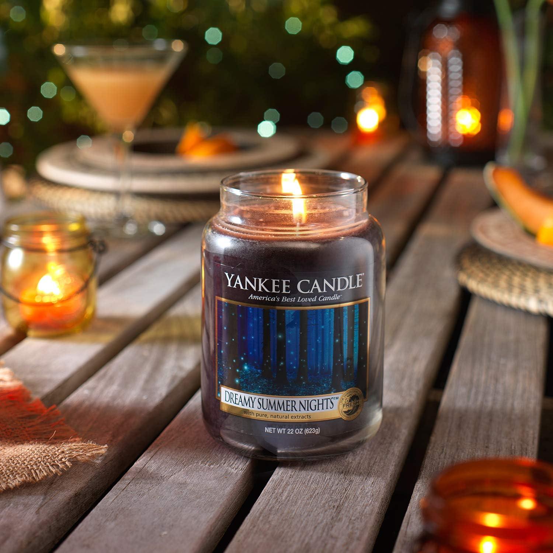 Yankee Candle Dreamy Summer Nights 10 Wax Tarts Melts FREE P/&P