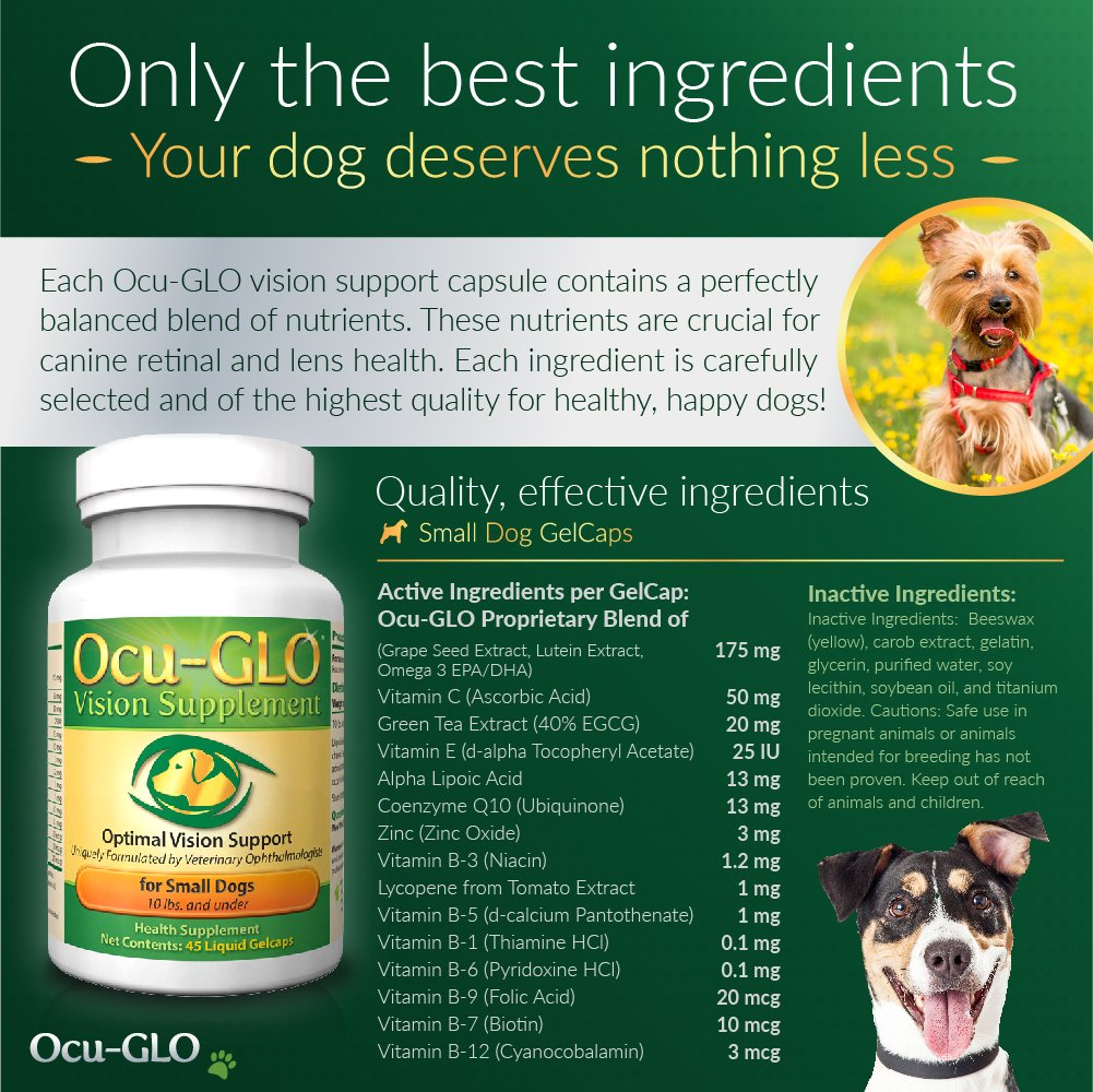 Ocu-GLO Vision Supplement for Small Dogs, Animal Necessity - Lutein, Omega-3 Fatty Acids, Grapeseed Extract Support Optimal Eye Health & Vision in Dogs - Antioxidants for Canine Ocular Health - 45ct by Ocu-GLO (Image #4)