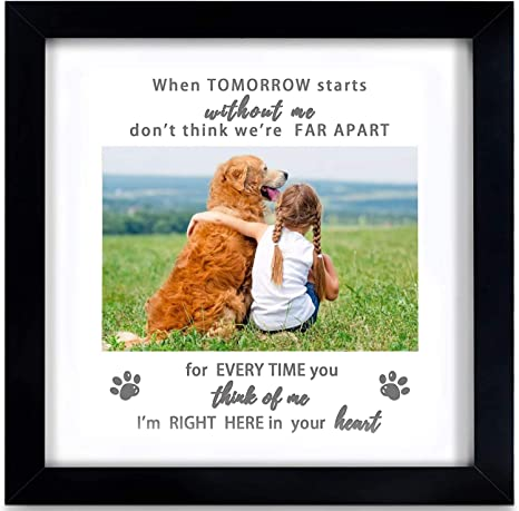 Loss of Pet Memorial Dog Memorial Pet Memorial Rainbow Bridge If Love Could Have Saved You Cat Memorial You Would Have Lived Forever