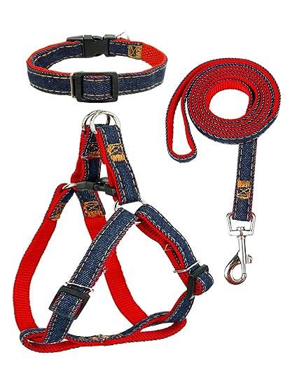 Amazon.com : Star Picker Adjustable Dog Leash Harness Set with ...