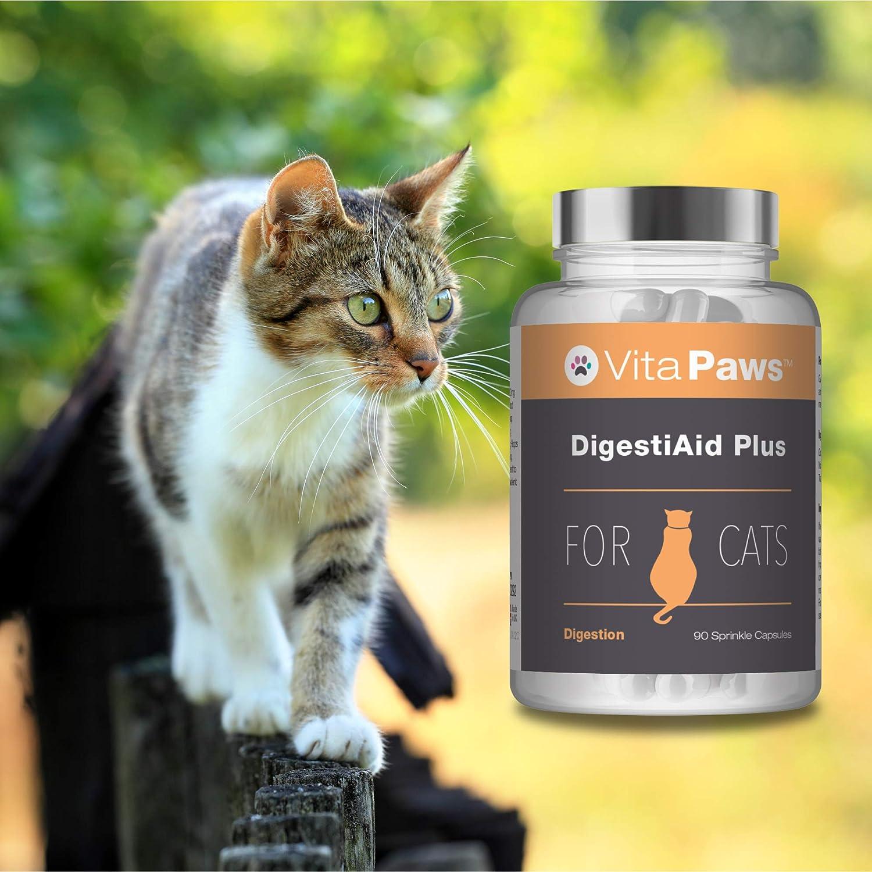 VitaPawsTM DigestiAid Plus | 120 Cápsulas para espolvorear | Puede mejorar la salud digestiva de nuestra mascota | Indicado para gatos: Amazon.es: Salud y ...