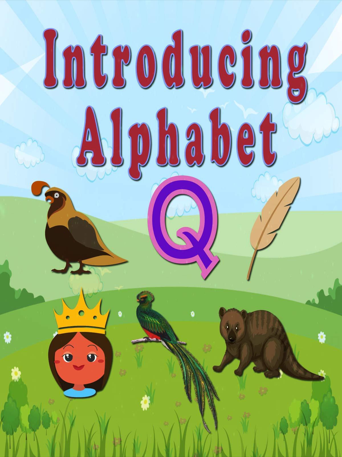 Introducing Alphabet Q on Amazon Prime Video UK