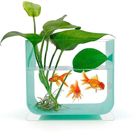 NewCrea acuario de acrílico con 4 pies para escritorio, azul, cuadrado