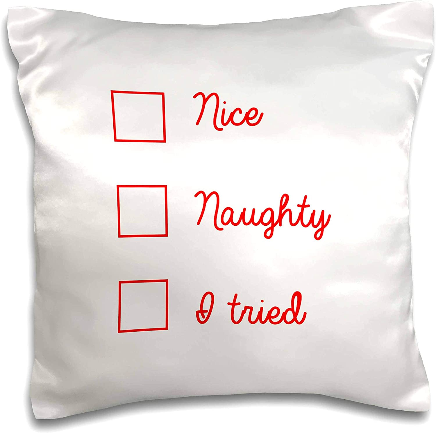 3dRose Tory Anne Collections Quotes - Nice Naughty I Tried - 16x16 inch Pillow Case (pc_301736_1)