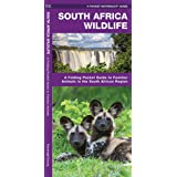 South Africa Wildlife: A Folding Pocket Guide to Familiar Animals in the South African Region (Wildlife and Nature Identifica