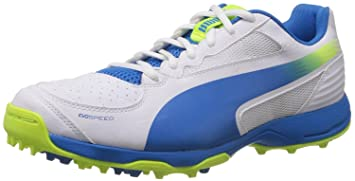 Image Unavailable. Image not available for. Colour  Puma Evospeed 3.2 Cricket  Shoes Rubber ... 92f5360ab