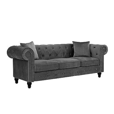Amazon.com: Divano Roma Furniture Classic Velvet Scroll Arm Tufted ...