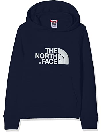 2e87f898830f THE NORTH FACE Children s Youth Drew Peak Hoodie