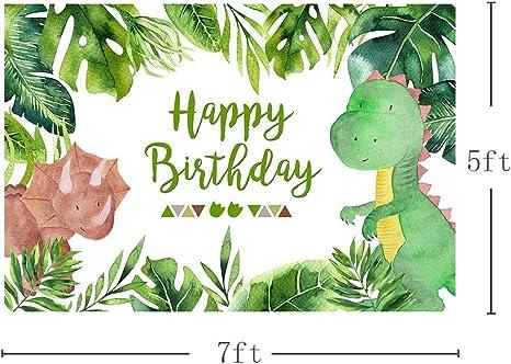 Mehofoto Dinosaurier Junge Geburtstag Fotostudio Hintergrund Safari Dschungel Wilde Grüne Palmen Blätter Happy Birthday Party Dekoration