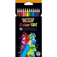 BIC Color Up Üçgen Kuru Boya Kalemi, 12'li Kutu