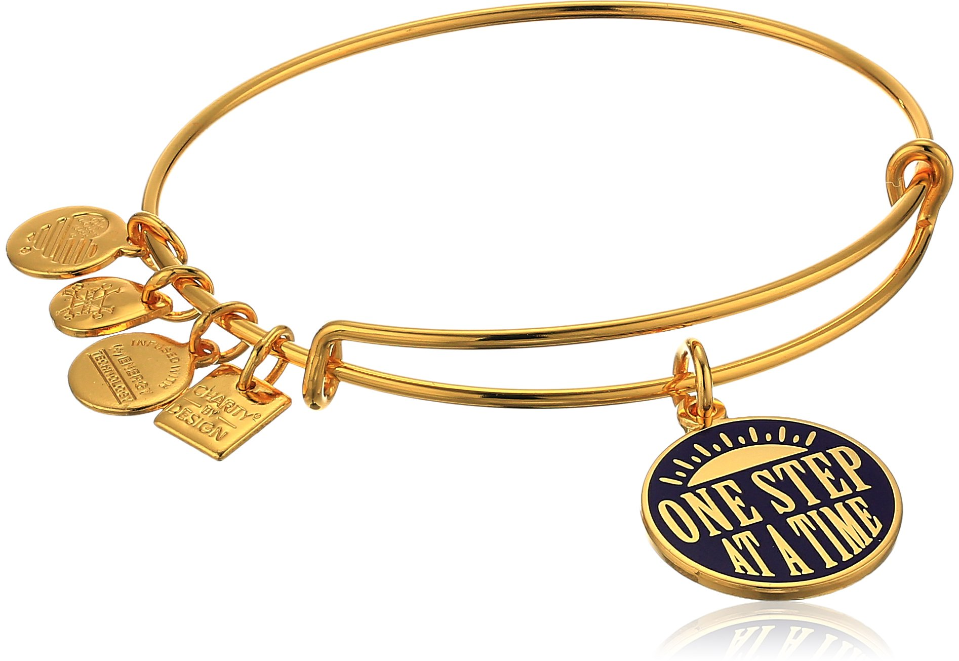 Alex and Ani Charity By Design One Step Charm Bangle, Expandable