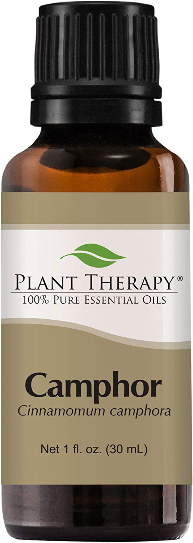 Plant Therapy Camphor White Essential Oil 30 mL (1 oz) 100% Pure, Undiluted, Therapeutic Grade