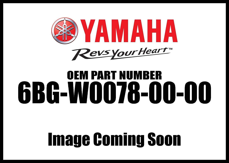 Yamaha Water Pump Repair Ki 6Bg-W0078-00-00 New Oem