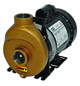 "AMT Pump 388F-97 Inline Centrifugal Pump, Bronze, 1/2 HP, 1 Phase, 115/230V, Curve A, 1-1/2"" NPT Female Suction & Discharge Ports"